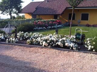 Foto - Villa, ottimo stato, 250 mq, Sariano, Gropparello