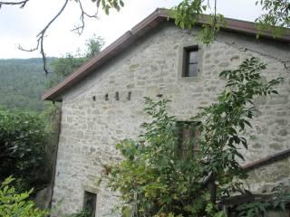 Foto - Rustico / Casale, da ristrutturare, 3810 mq, Rimbocchi, Chiusi Della Verna