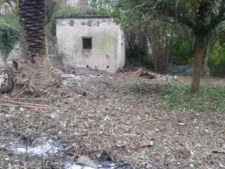 Foto - Terreno agricolo in Vendita a Galluccio