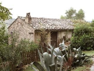 Foto - Rustico / Casale C.da Forestieri, Ponzano di Fermo