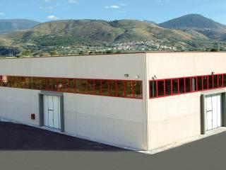 Immobile Vendita Santa Maria del Cedro