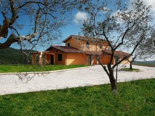 Foto - Villa Strada Provinciale Frassine, Frassine, Monterotondo Marittimo