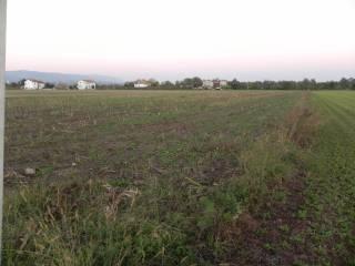 Foto - Terreno agricolo in Vendita a Thiene