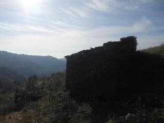 Foto - Terreno edificabile residenziale a Apricale