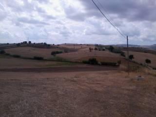 Foto - Terreno agricolo in Vendita a Vasto
