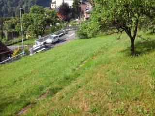 Foto - Terreno edificabile residenziale a Villadossola
