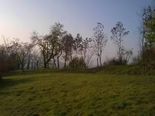 Foto - Terreno agricolo in Vendita a Gambugliano