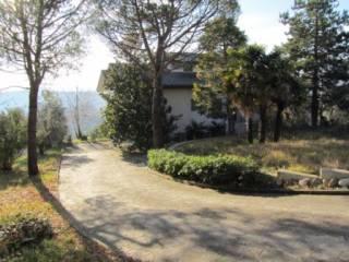 Foto - Villa Contrada Piaggiole 19, Piane Di Falerone, Falerone