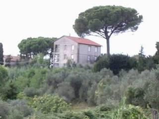 Foto - Casale, da ristrutturare, 330 mq, Gello, Palaia