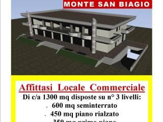 Immobile Affitto Monte San Biagio