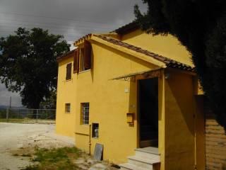 Foto - Rustico / Casale via Pozzolungo 20, Belvedere Ostrense