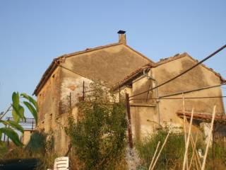 Foto - Rustico / Casale via Antico 2, Fornace, Belvedere Ostrense