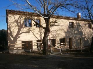 Foto - Rustico / Casale Strada Comunale 14, Santa Margherita La Supera, Castelnuovo Berardenga