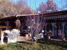 Villa Vendita Venarotta