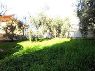 Foto - Villetta a schiera 5 locali, nuova, Monsummano Terme