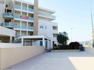 Foto - Bilocale nuovo, primo piano, Japigia, Bari
