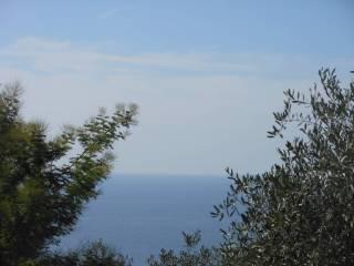 Foto - Villa Cornice Golfo Paradiso, Recco
