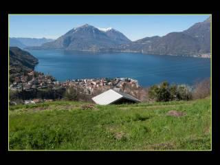 Foto - Terreno agricolo in Vendita a Bellano