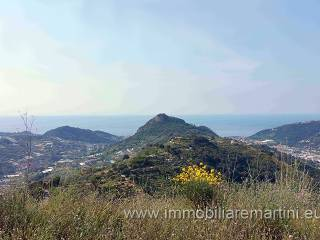 Foto - Terreno edificabile residenziale a San Biagio della Cima
