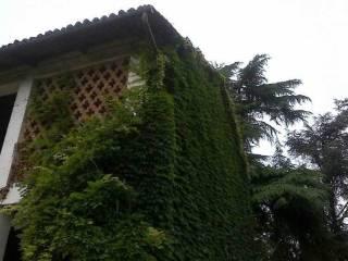 Foto - Rustico / Casale 400 mq, Montafia
