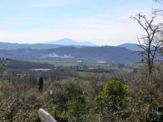 Foto - Villetta a schiera 5 locali, nuova, Lucignano