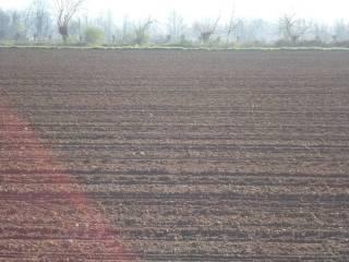Foto - Terreno agricolo in Vendita a Moimacco