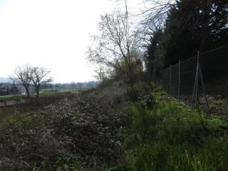 Foto - Terreno edificabile industriale a Pollenza