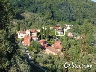 Foto - Rustico / Casale via San Lorenzo, Orbicciano, Camaiore
