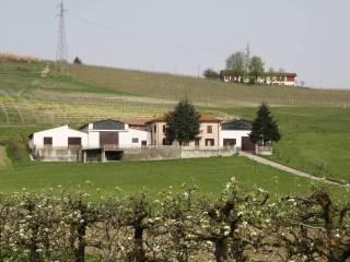Foto - Rustico / Casale, buono stato, 950 mq, Chiesa Vecchia, Calamandrana