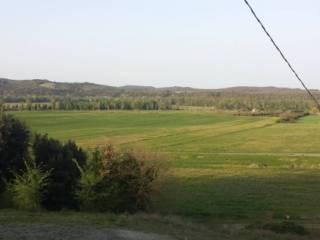 Foto - Terreno agricolo in Vendita a Civitella Paganico