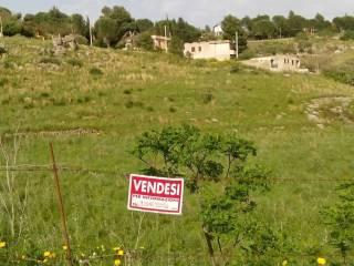 Foto - Terreno edificabile residenziale a Belmonte Mezzagno
