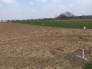 Foto - Terreno agricolo in Vendita a Cogliate