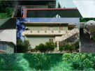 Palazzo / Stabile Vendita Teulada