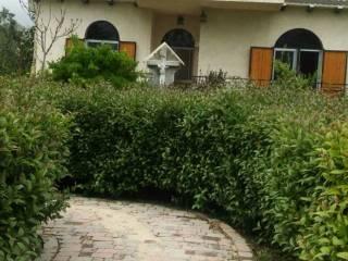 Foto - Villa Contrada Casali 42, Nocciano