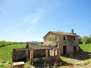 Foto - Rustico / Casale via Tevere, Madonna Del Piano, Monte Castello di Vibio