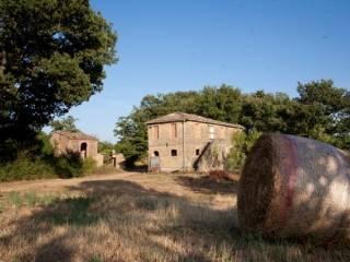 Foto - Rustico / Casale, da ristrutturare, 170 mq, Chiusdino