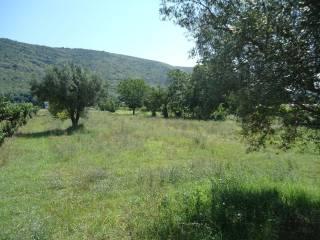 Foto - Terreno agricolo in Vendita a Bellona