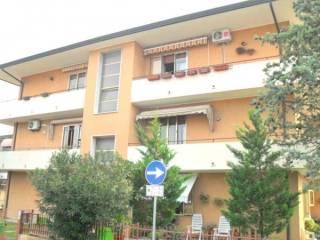 Foto - Appartamento via Francesco Petrarca, Taglio Di Po