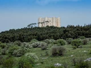 Foto - Villa Castel del Monte, Castel Del Monte, Andria
