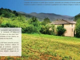 Foto - Casale via di Sottomonte 302, Massa Macinaia - San Leonardo, Capannori
