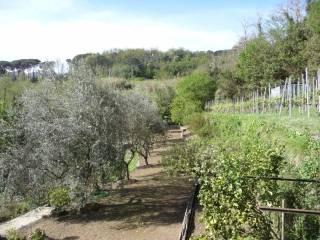 Foto - Villa, ottimo stato, 270 mq, Camogli