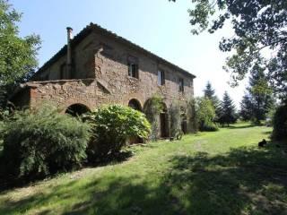 Foto - Rustico / Casale, da ristrutturare, 330 mq, Montescudaio