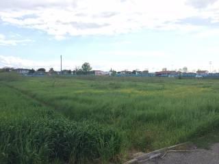 Foto - Terreno edificabile industriale a San Mauro Pascoli