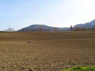 Foto - Terreno agricolo in Vendita a Umbertide