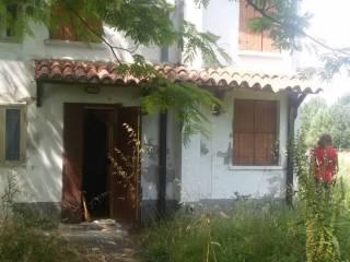 Foto - Rustico / Casale via Vallalta sul Tartaro 90, Bagnolo di Po