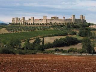 Immobile Vendita Monteriggioni
