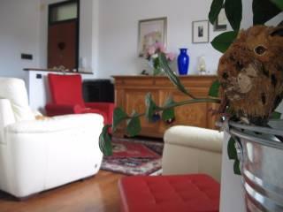 Foto - Appartamento ottimo stato, terzo piano, Intorno Mura, Treviso