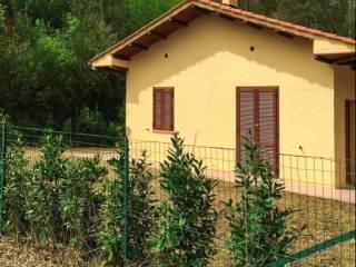 Foto - Villa all'asta Località Capanne, Massa Marittima