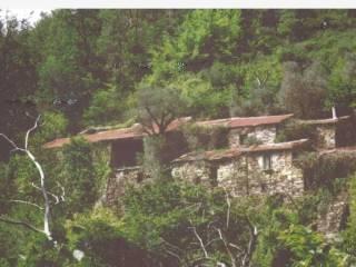 Foto - Rustico / Casale, da ristrutturare, 200000 mq, Ceriana
