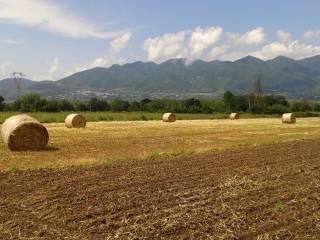 Foto - Terreno agricolo in Vendita a Baia e Latina